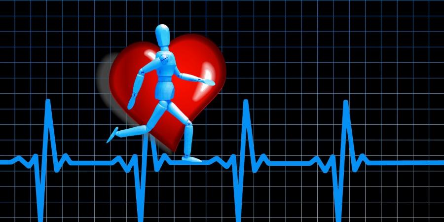 Exercice Physique Et Entrainement Par Intervalles Icardio